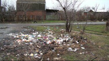 Бровки от мусора? СНТ «Надежда» просит помощи — очистить хутор Бровки от мусора