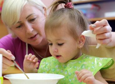 Оплатить детсад средствами материнского капитала сальчане могут по упрощенной схеме