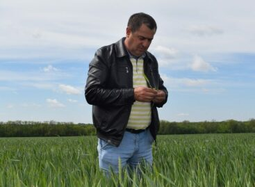 Главному агроному хозяйства «Славяне» присвоено звание Заслуженного работника сельского хозяйства Российской Федерации
