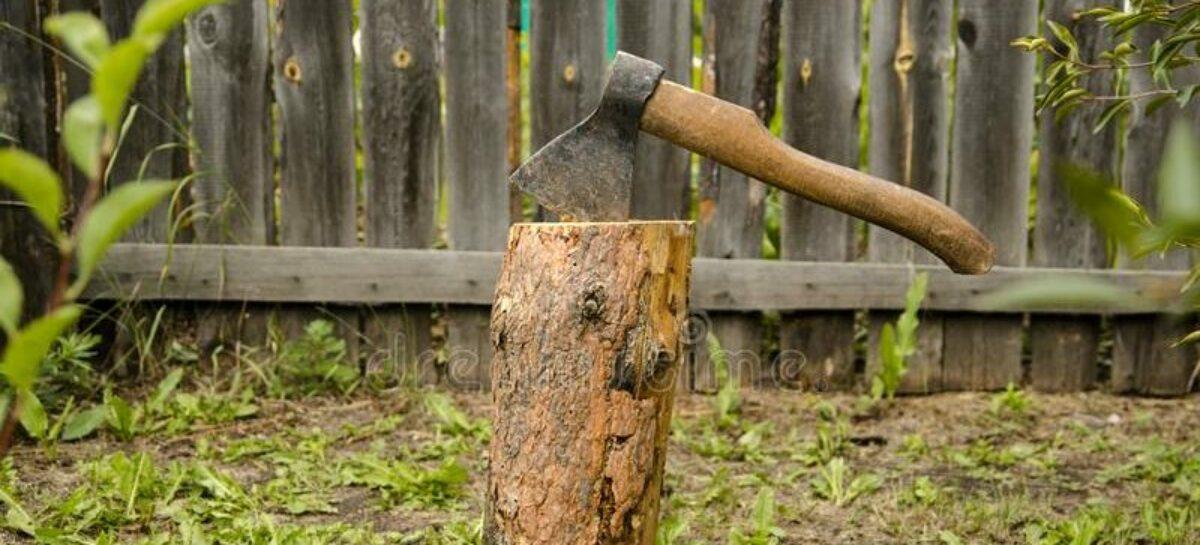 Сальчанка рубила дрова и топором попала себе по голове