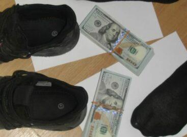 Из Ростовской области пытались вывезти незадекларированные 20 тысяч долларов в кроссовках