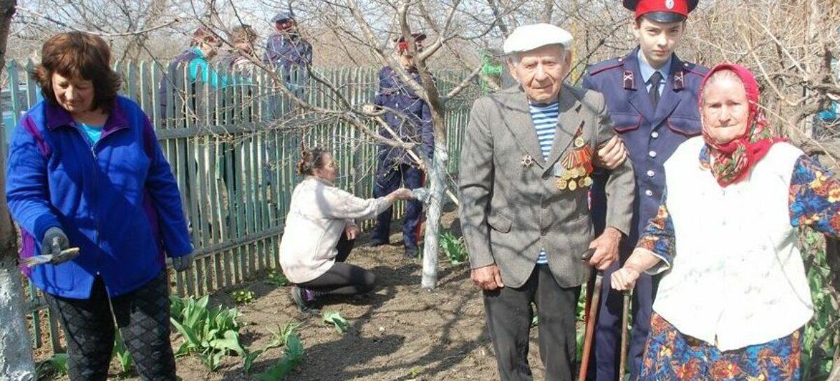 Донским ветеранам войны в решении бытовых проблем помогут волонтёры