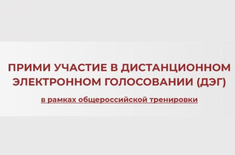 Сальчан приглашают принять участие в дистанционном голосовании