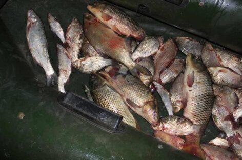 Сальчанин незаконно выловил из Маныча рыбы на 160 тысяч рублей