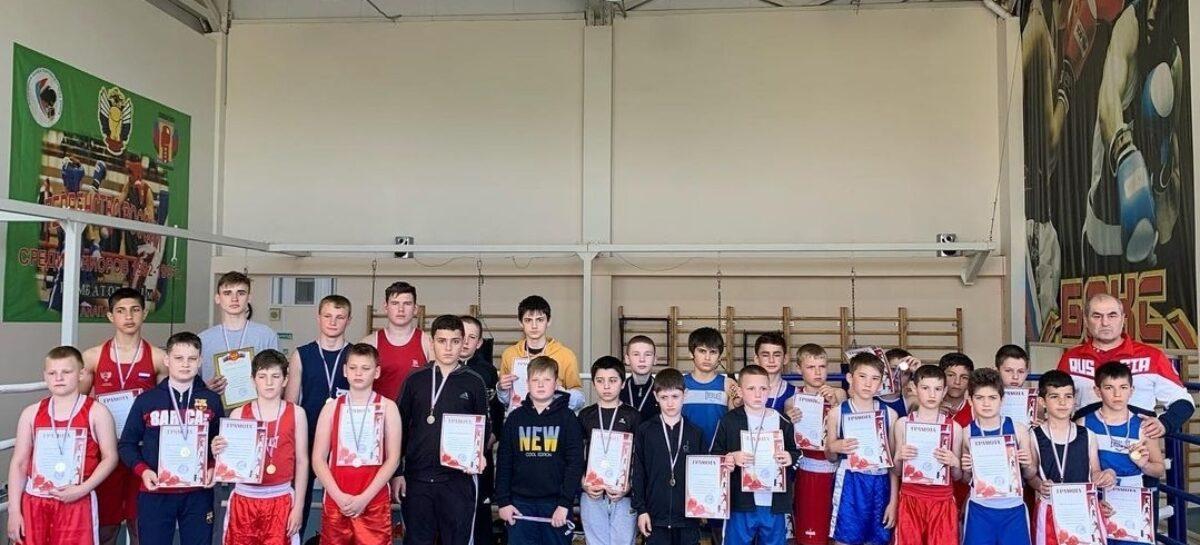Сальские боксёры собрали урожай наград на двух турнирах