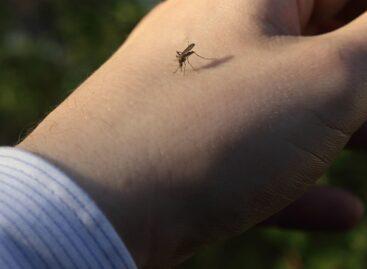 Сальские медики напоминают сальчанам об опасном заболевании, передающимся комарами