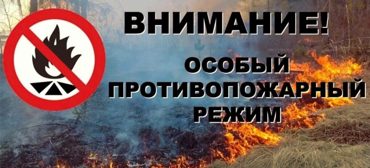 В Донском регионе объявлен особый противопожарный режим