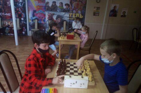 Шахматный турнир прошёл в Сальске в честь Дня России