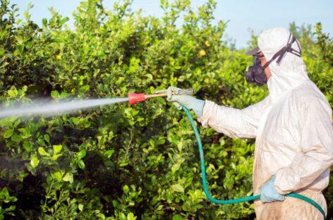 Возвращается госконтроль за пестицидами