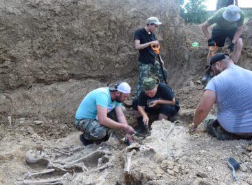В Сальске начата работа по извлечению останков мирных жителей, расстрелянных гитлеровцами на территории кирпичного завода