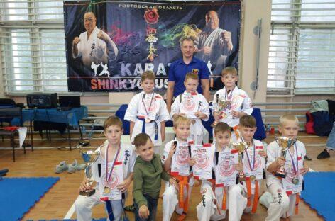Урожай медалей привезли сальские спортсмены клуба «Катана» из Новочеркасска