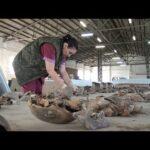 Останки людей, расстрелянных в карьерах кирпичного завода, исследуют криминалисты