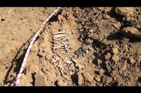 Без срока давности: новую расстрельную яму поисковики обнаружили в карьерах кирпичного завода