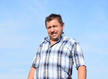 Посевная забота осени: в базовом хозяйстве Нового Егорлыка завершается закладка урожая будущего года