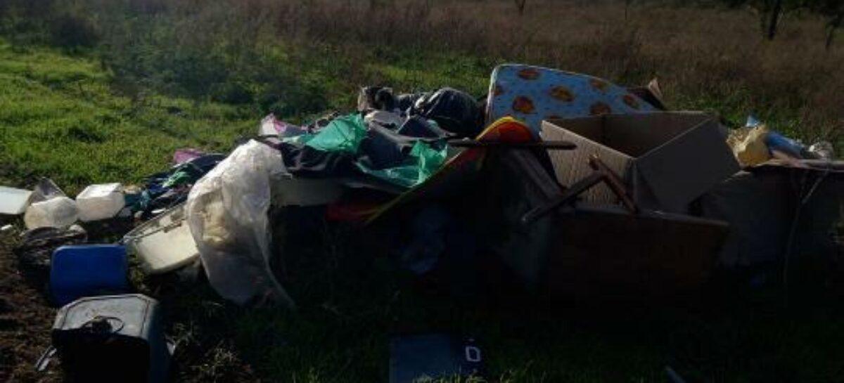 В районе Кучерды в Сальске кто-то вывалил гору мусора