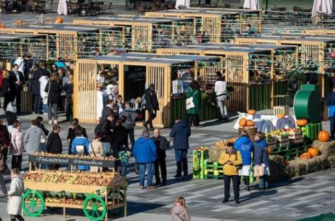 Рекордный урожай наград собрали донские аграрии на выставке «Золотая осень-2021»